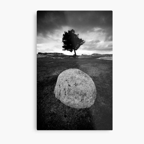 Black and White Egg Metal Print