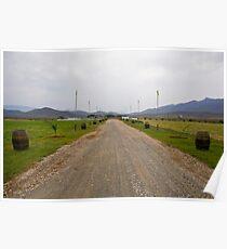 Wine Barrels Lined Farm Lane Poster