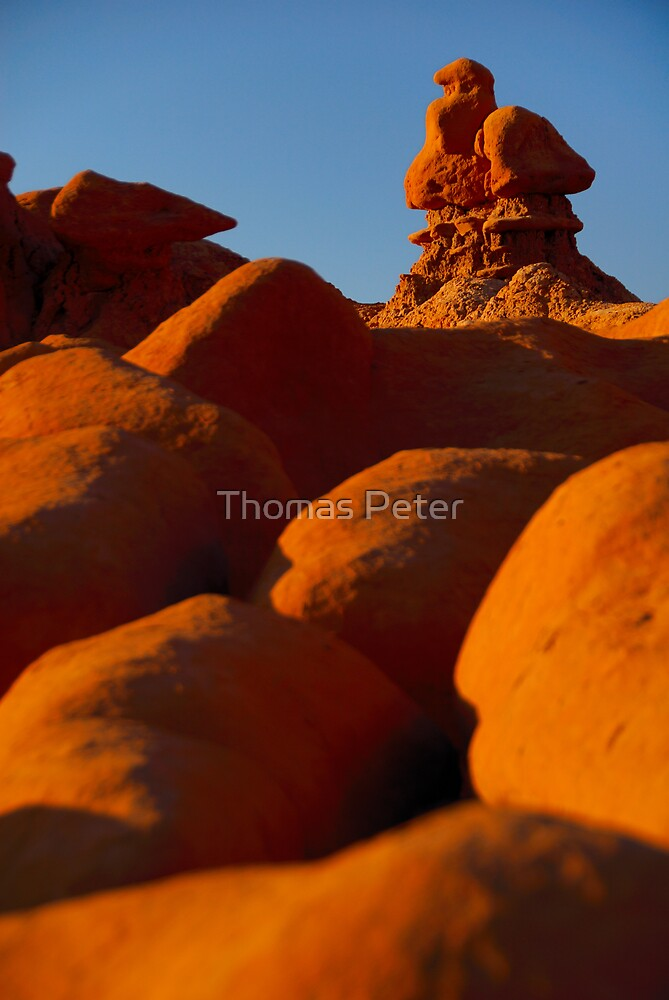 Natures Sculpture by Thomas Peter