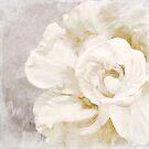 Petals Impasto Alabaster by mindydidit
