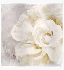 Blütenblätter Impasto Alabaster Poster