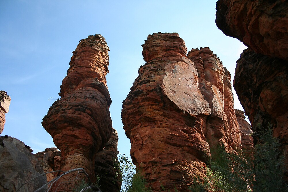 Lost City Spires - Limmen National Park by Norman Mueller