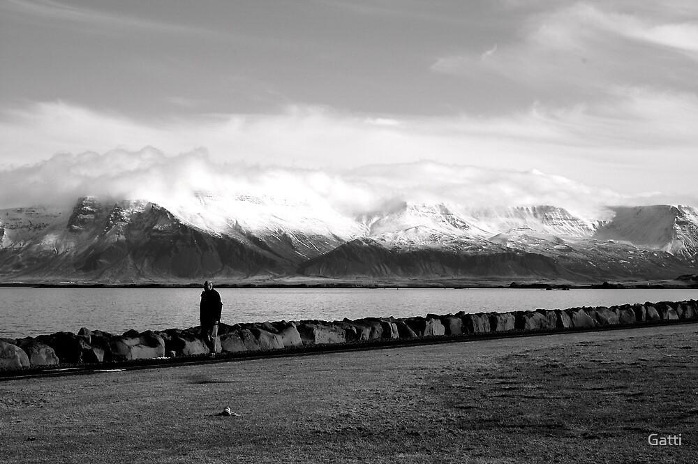 Icelandic Lake by Gatti
