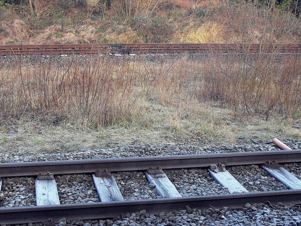 Tracks by SophieGorner