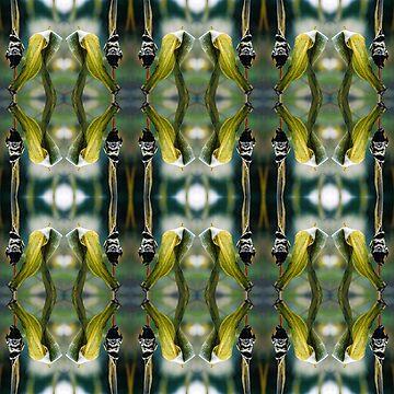 Corn Smut (Ustilago maydis) by RedLabelShirts