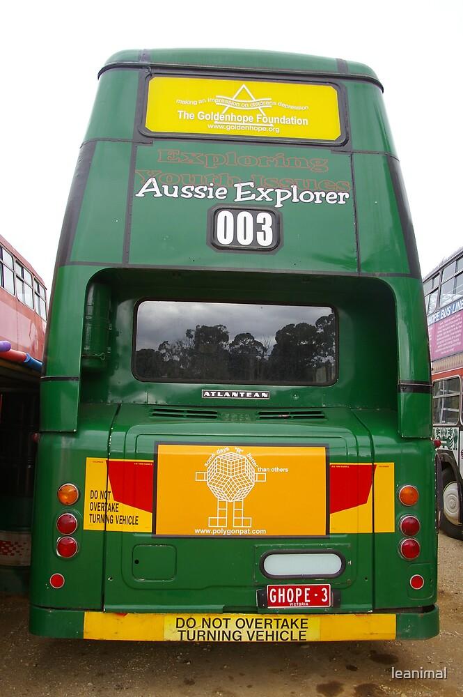 Aussie Explorer by leanimal