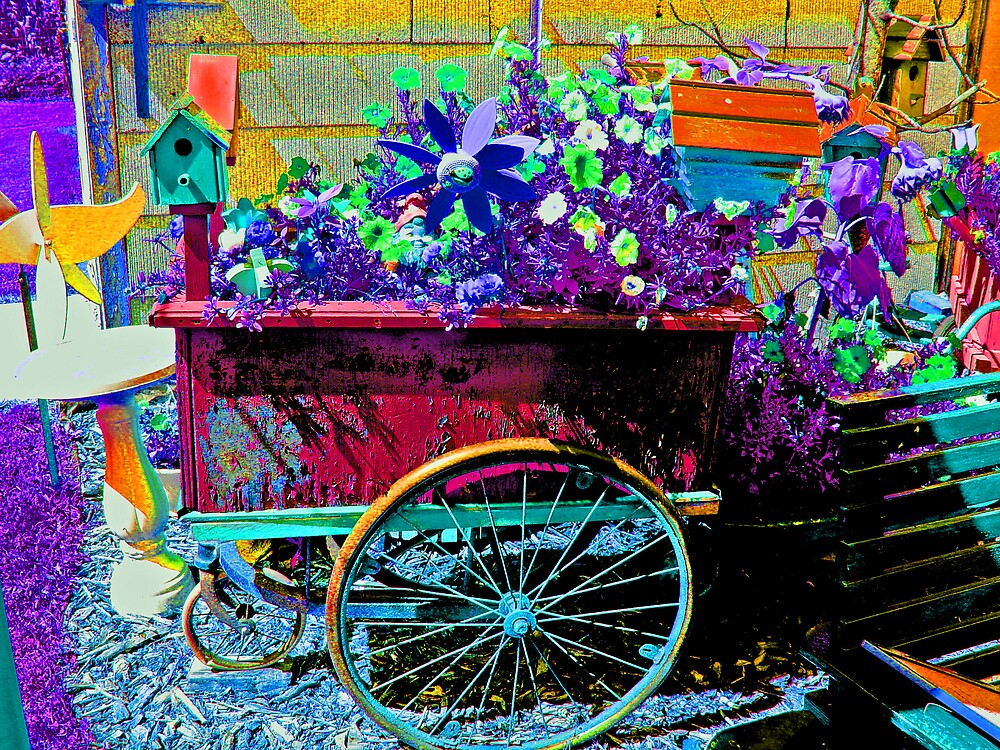 Glad Rags by Dennis Burlingham