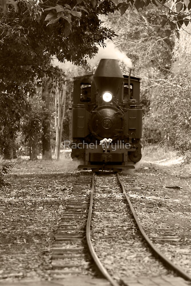 Steam Train by Rachel Wyllie