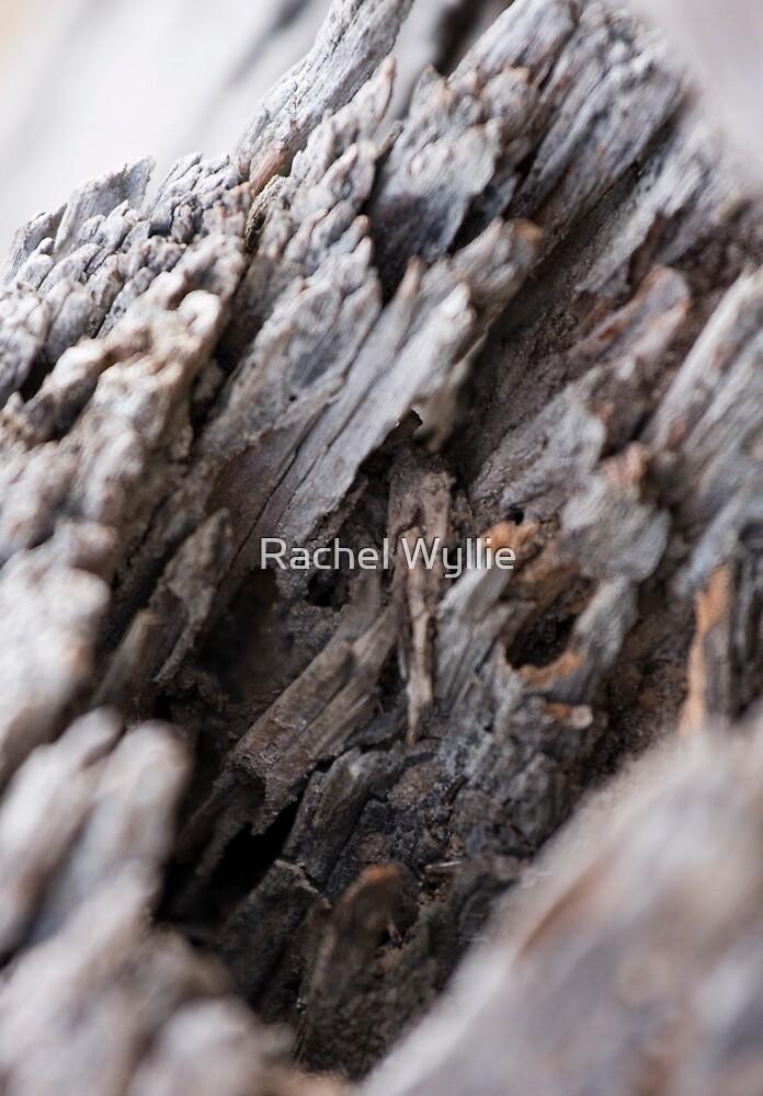 Old Wooden Post by Rachel Wyllie