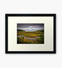 Port Granville Marshes Framed Print
