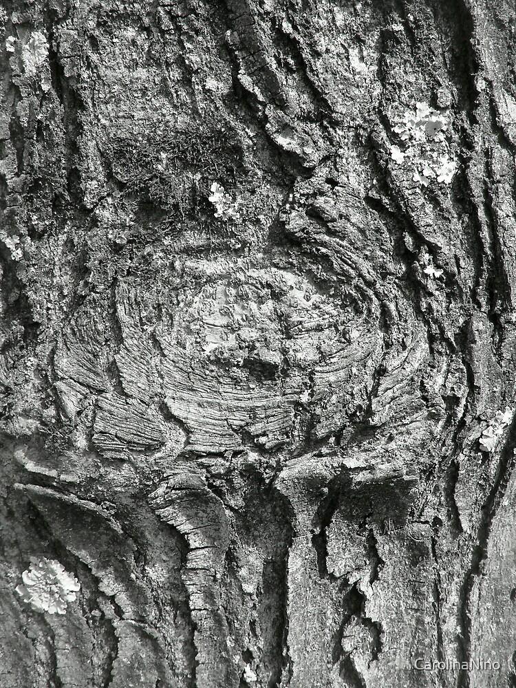 Tree by CarolinaNino