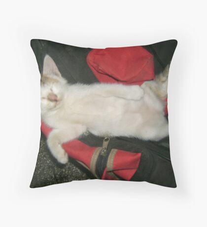 cat or human ? Throw Pillow