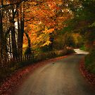 Automn in Snowdonia by Thomas Peter