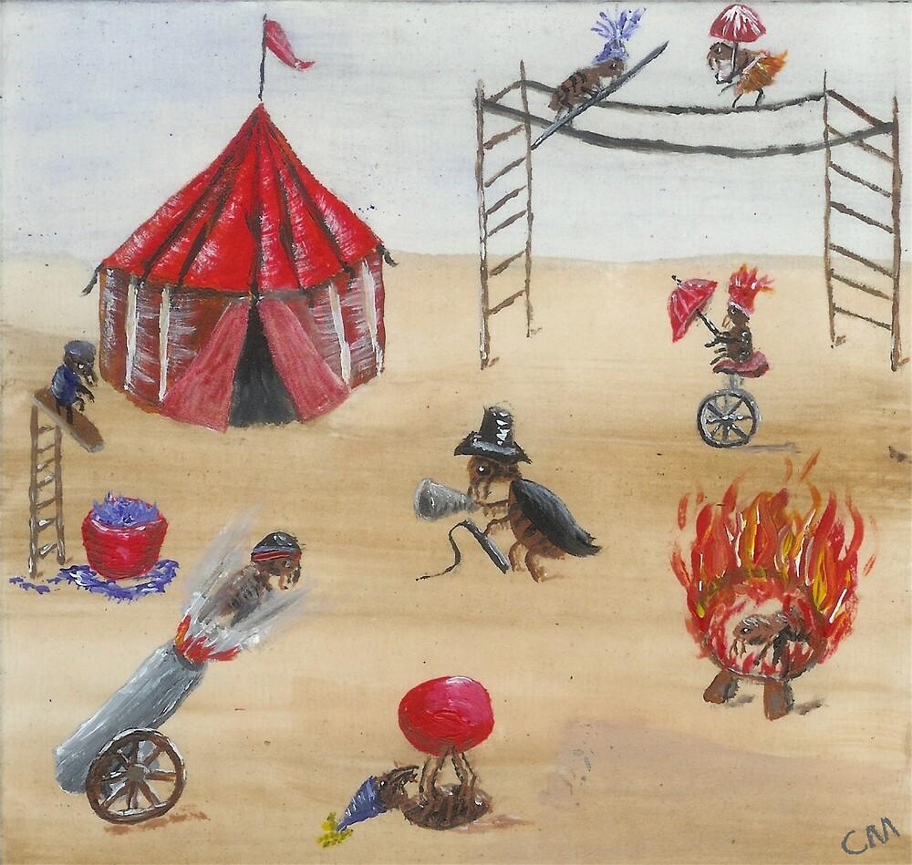 Flea Circus by Carol Megivern