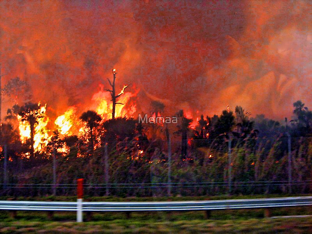 Fire On Alligator Alley April 22, 2009 by Memaa