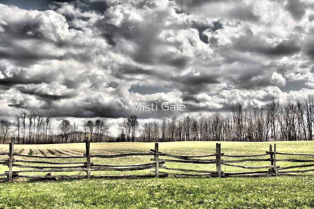 Silver Sky's by Misti Love