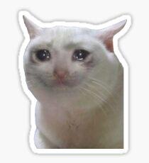 Sad Cat Meme Sticker