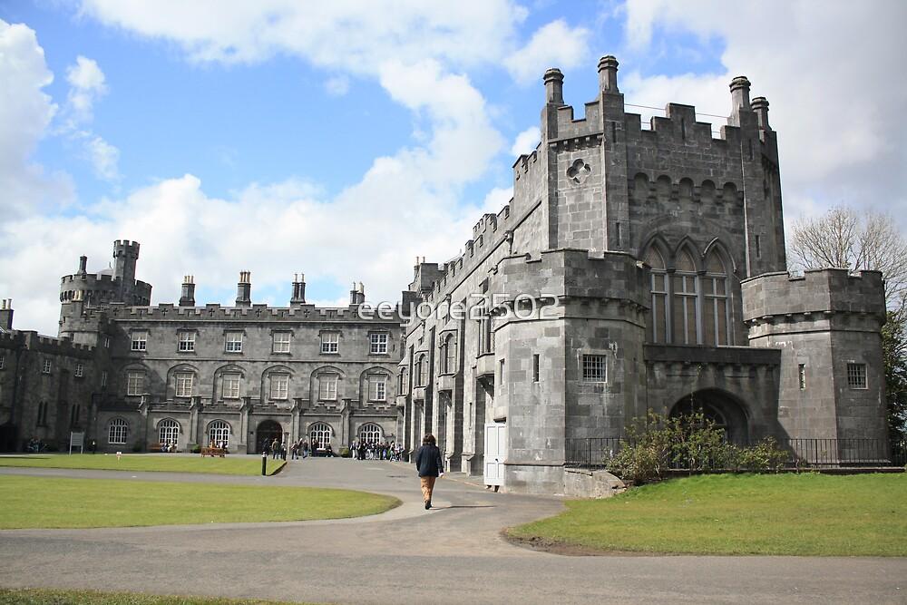 Kilkenny Castle by eeyore2502