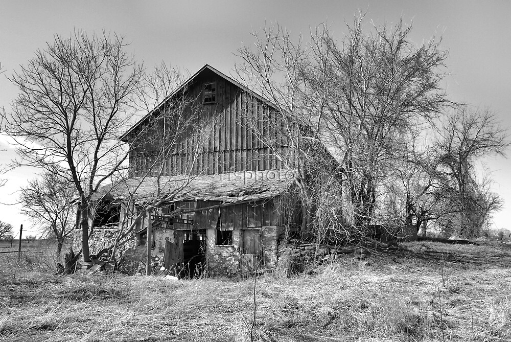 This Old Barn by rfsphoto