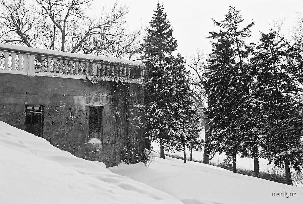 bandshell in winter  by marilynz