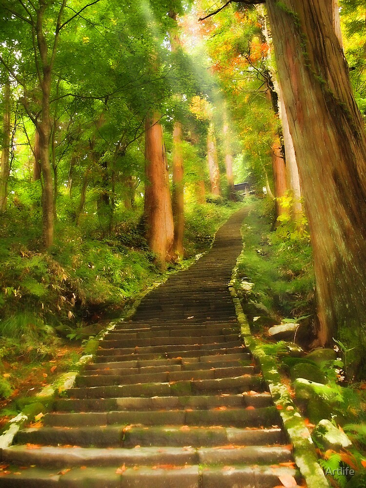 Stairs to Haguro-san by Artlife