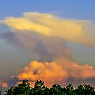 Clouds formations as an eagle by Zina Stromberg