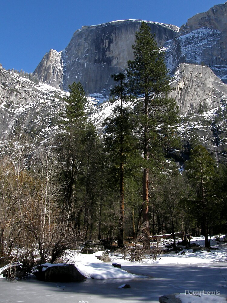 Below Majestic Half Dome ~ by Patty Lewis