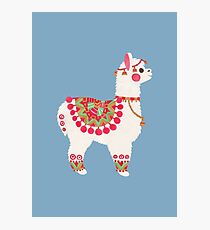 The Alpaca Photographic Print