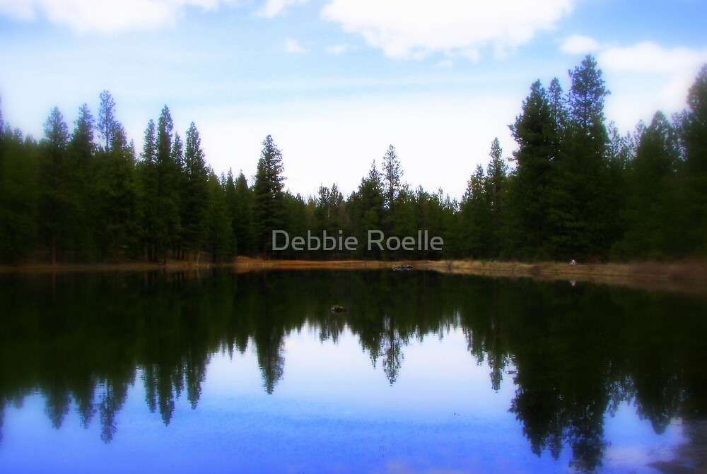 A Day To Reflect by Debbie Roelle
