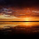 Loch Sport Wetlands by Patricia Gibson