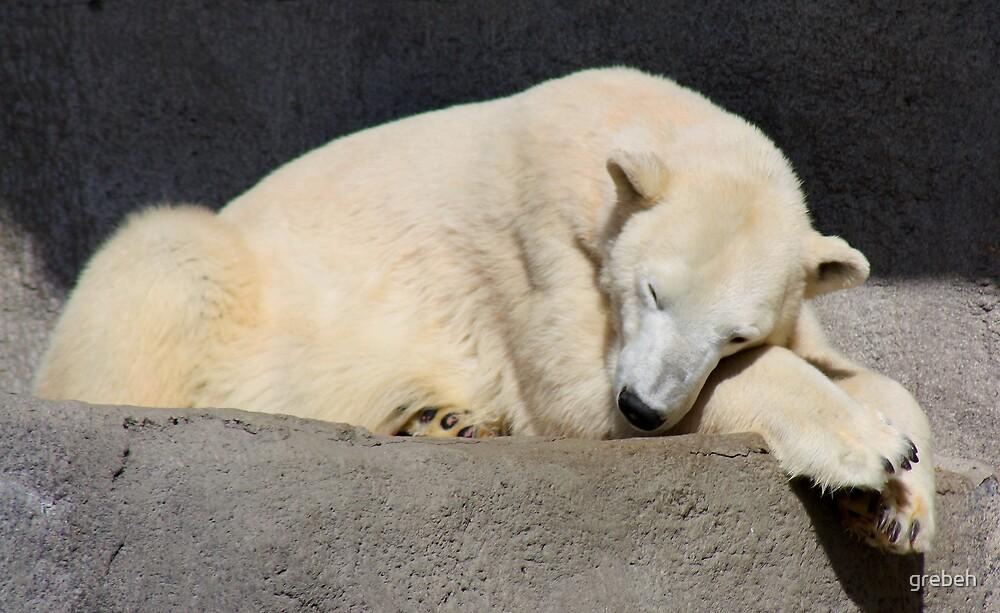 Polar Bear by grebeh