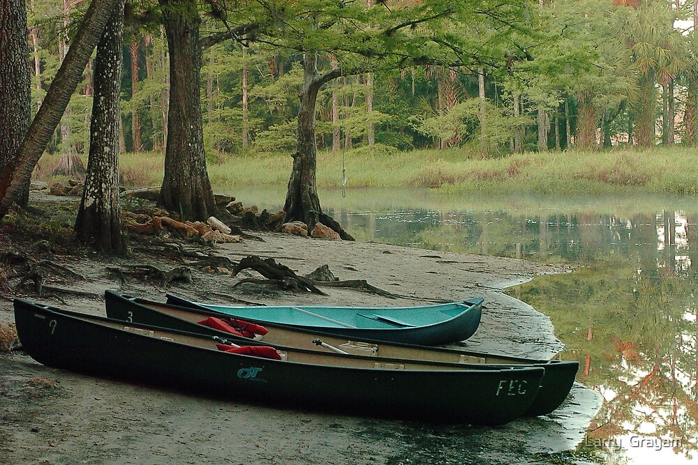 Canoes on bank by Larry  Grayam