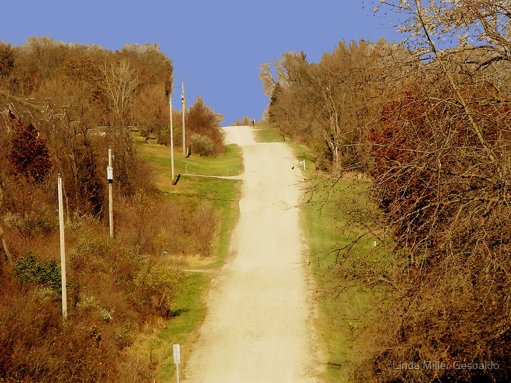 An Up Hill Drive by Linda Miller Gesualdo