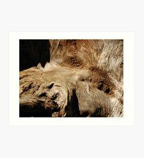 The  Redwood Greenman Art Print