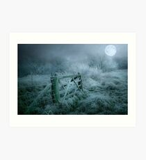 Frosty moonlit night Art Print
