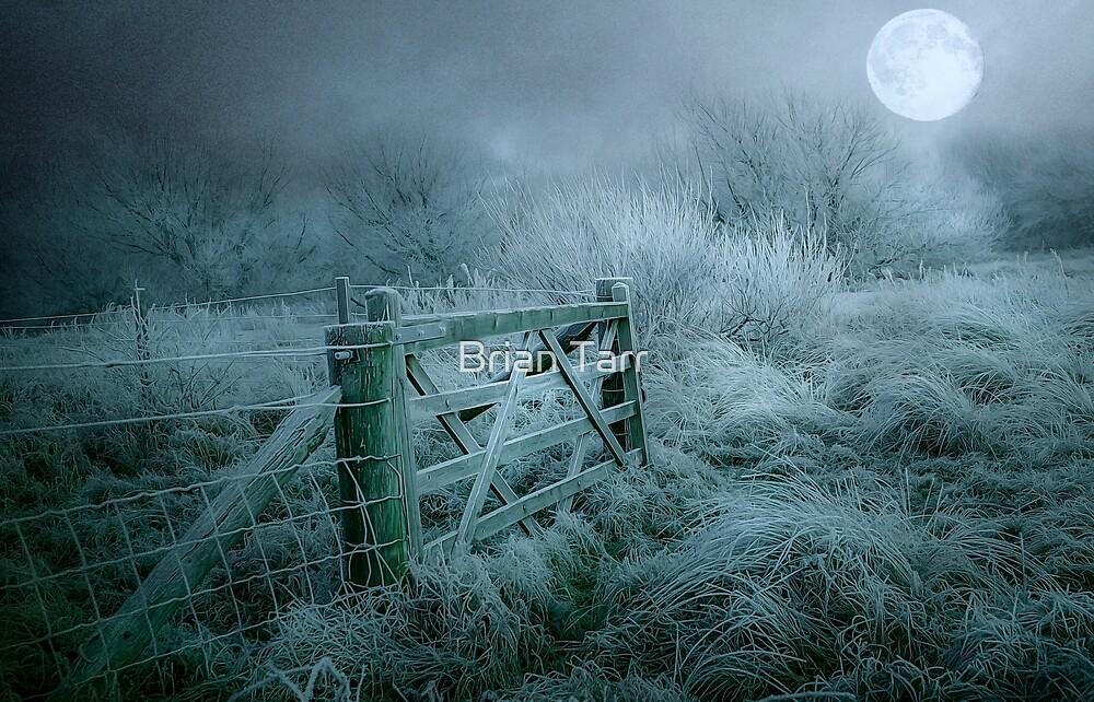 Frosty moonlit night by Brian Tarr