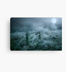Frosty moonlit night Canvas Print