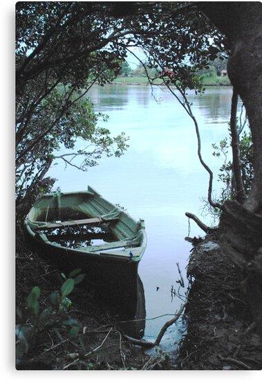 Mangrove mooring by Graham Mewburn
