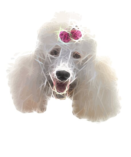 Poodle Dog Groomer Grooming Graphic Design Posters By Quatschkopp
