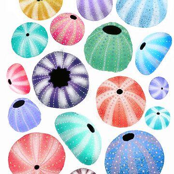 Urchins by Tanuwidjaya