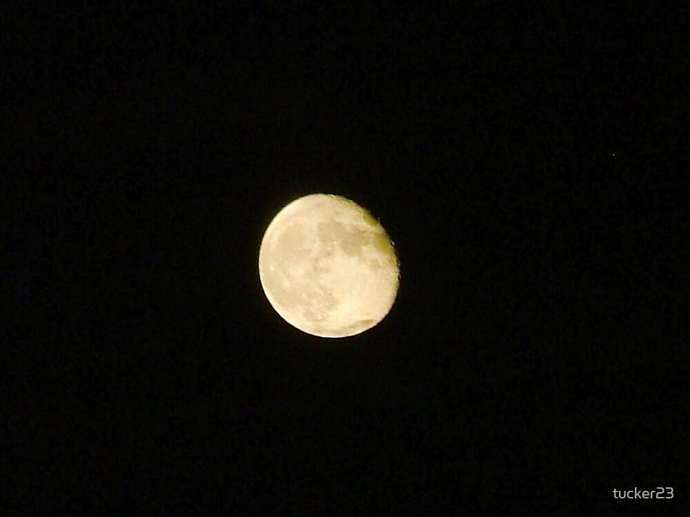 moonlight summer by tucker23