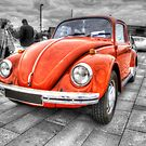 Orange Beetle by Vicki Spindler (VHS Photography)