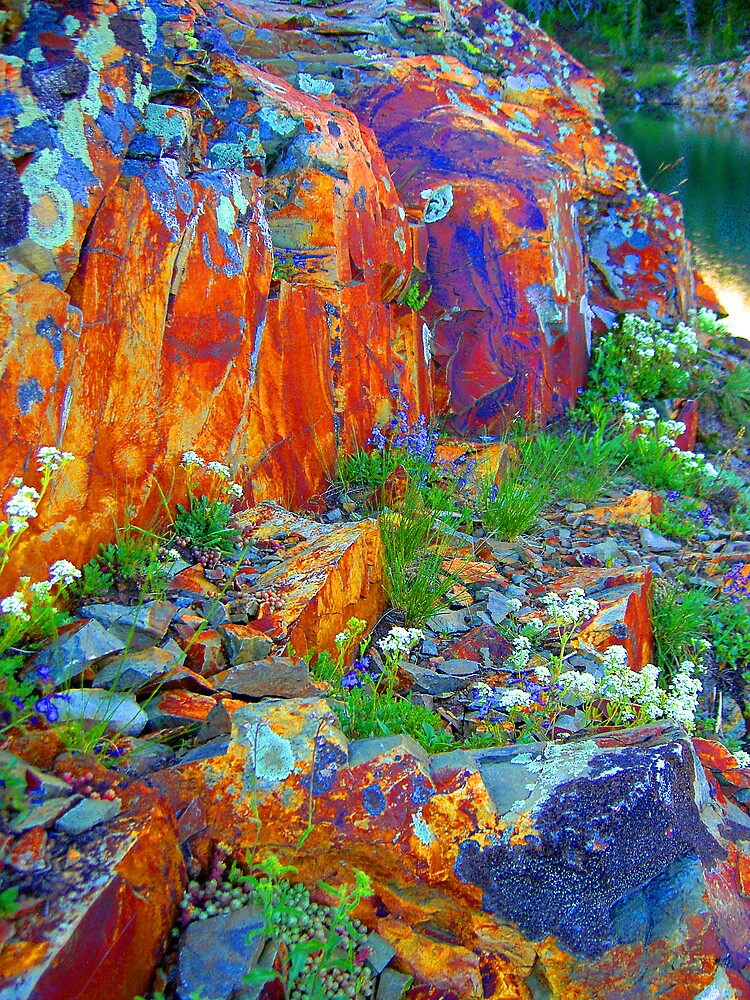 nature's pigments by LumenLux