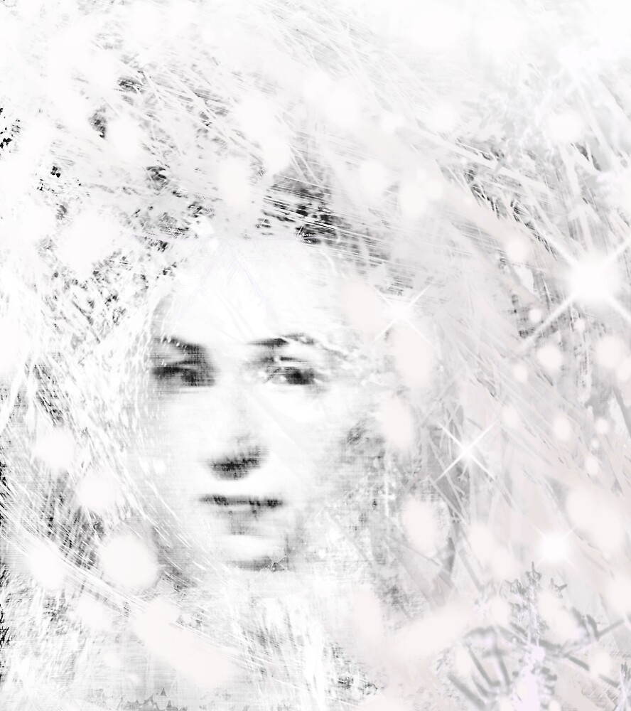 The Snow Queen by Donna Ingham