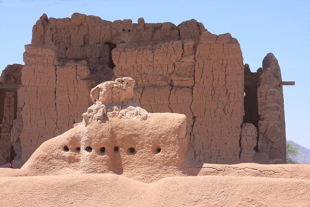 Casa Grande Ruins Monument by noffi