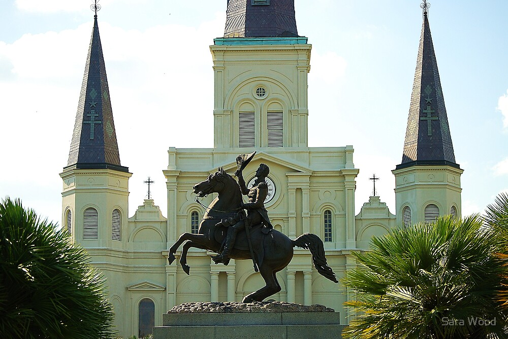 Andrew Jackson and the St Louis Cathedral by Sara Wood