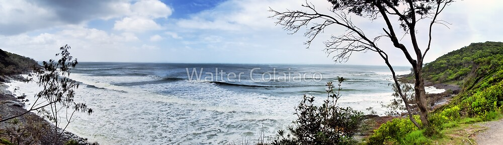 Seaside Panorama by Walter Colaiaco