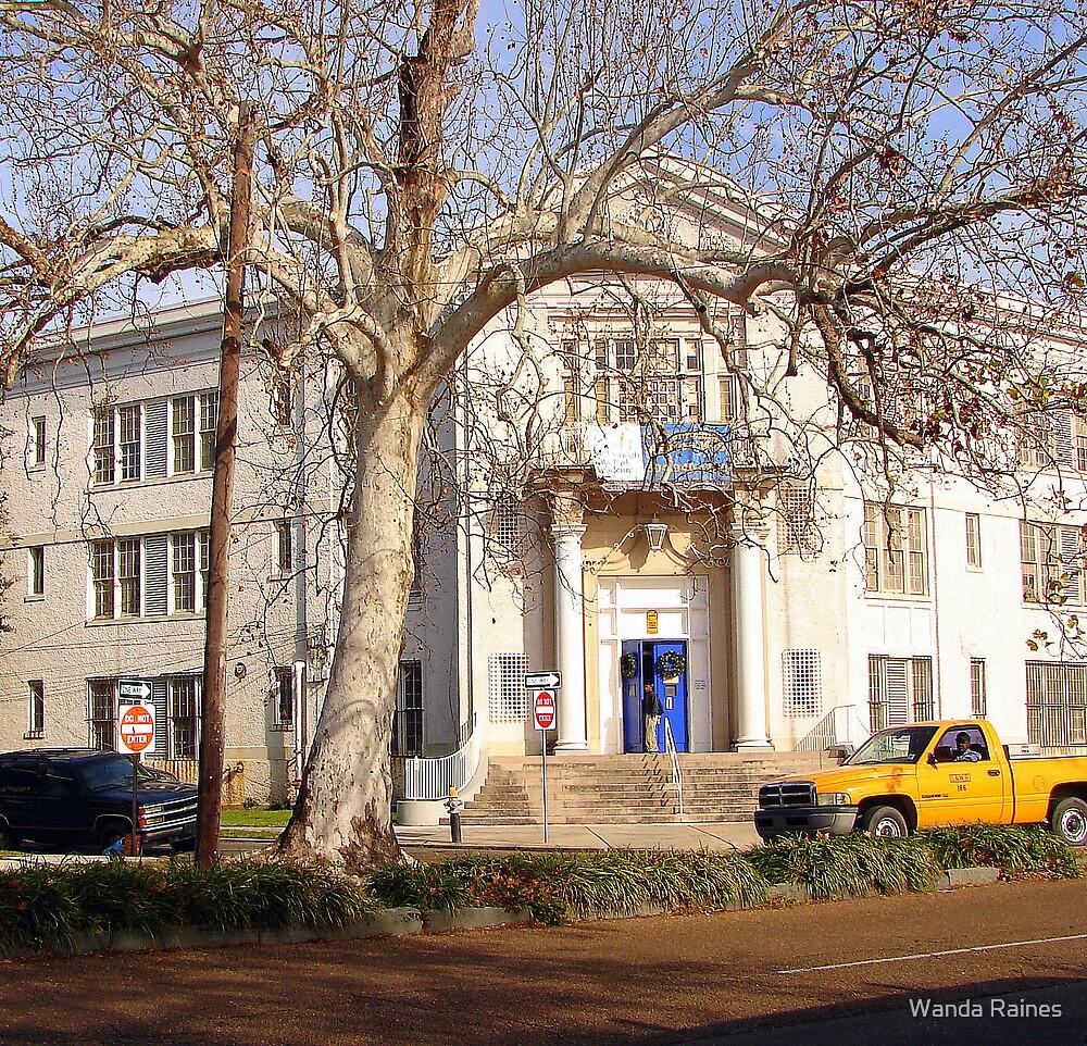 McDonough #28 Junior High School by Wanda Raines