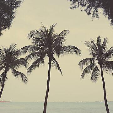 Palm tree trio by gailgriggs