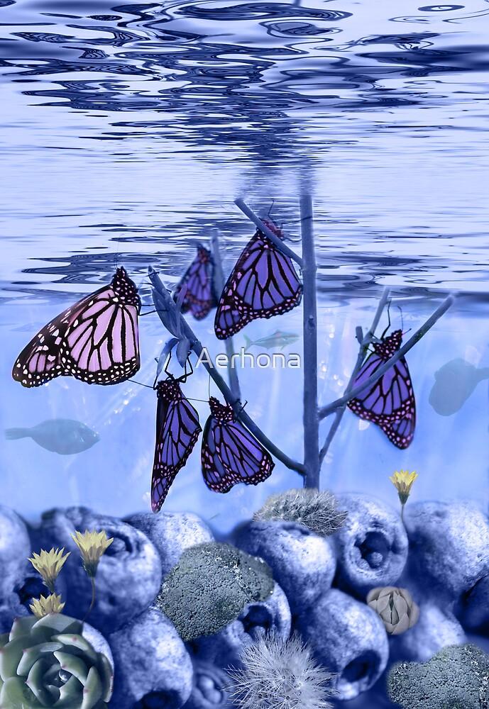 Butterfly Reef by Aerhona